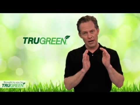 TruGreen | Who Is TruGreen? | Lawn Care Services