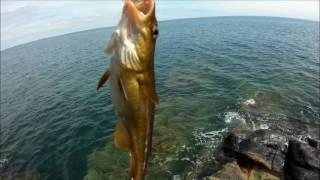 видео Отдых на берегу черного моря с рыбалкой [рыбалка на черном море]