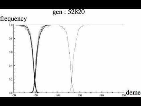 Analysis of Population Genomic Data from Hybrid Zones