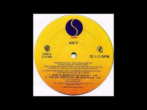 ICE T - WHAT YA WANNA DO ( INSTRUMENTAL ) ( MELÔ DO PARE )
