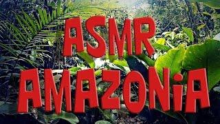 Baixar (ASMR ITA) Amazzonia - 60 Days in Amazon Rainforest