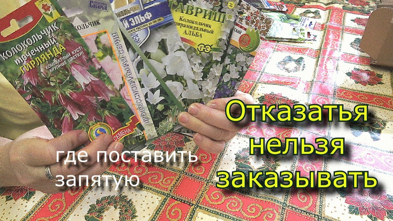 агро семена интернет магазин
