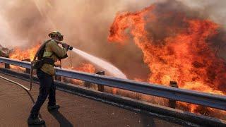 Waldbrände in Kalifornien: Zahl der Toten steigt auf 42
