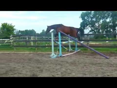 EEF Landelina First Time Free Jumping!