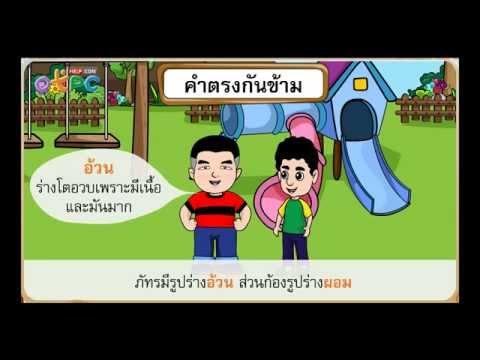 คำตรงกันข้าม - สื่อการเรียนการสอน ภาษาไทย ป.3