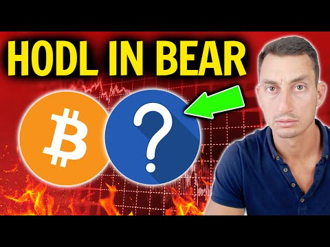 REVEALING CRYPTOS I WILL HOLD During A Bitcoin Bear Market! 😲 (Full Explanation)