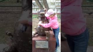 """Томск. Статуя волка """"щас спою""""."""