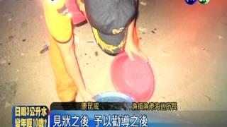 小琉球綠蠵龜孵化 缺德客竟捕抓