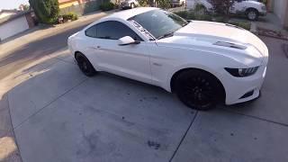 15-17 Mustang RTR Side Rocker Splitter Install