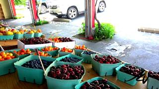 July 6, 2020   Drive to Oliver, Vineyards everywhere and stop at Fruit-stand, Cherry Orchard