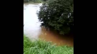 Video Rio das Almas 2011 download MP3, 3GP, MP4, WEBM, AVI, FLV Juli 2018