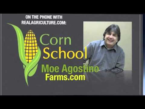 Corn School