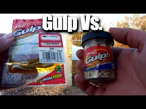 Minnow vs Maggot - GULP BATTLE! Which one is better for fishing?