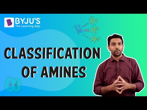 Identification, Nomenclature and Classification of Amines - Primary,  Secondary and Tertiary Amines