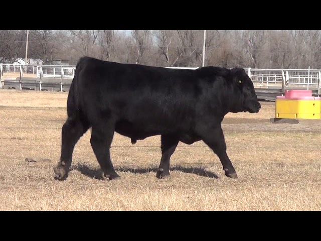 Express Ranches Lot 16