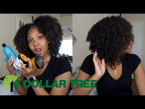 DEFINED WASH & GO USING DOLLAR TREE PRODUCTS  (SHOCKING RESULTS, $1 Hair Routine)
