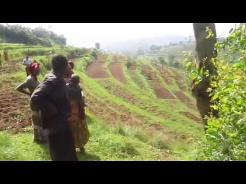 Rwanda Soil Health Consortium