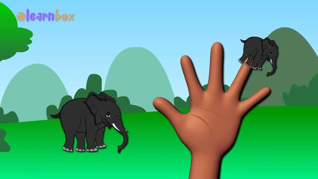 elefanten cartoons animation singen finger familie