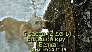 5 заезд (2 день) Большой круг Белка (2 часть) 26 11 19