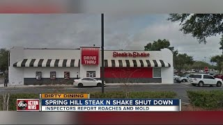 Dirty Dining: Steak 'n Shake shut down for a day after live roaches were seen crawling near food