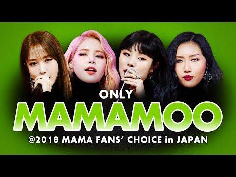 MAMAMOO at 2018 MAMA FANS' CHOICE in JAPAN  | All Moments