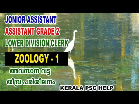 ZOOLOGY | Junior Assistant | Assistant Grade 2 | Group D | Degree Level Exam Coaching