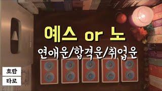 [타로카드] 예스 or 노 ver.2