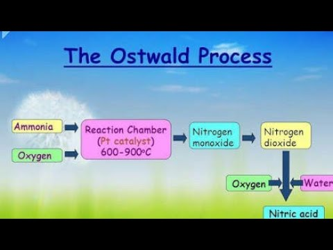 Oswalds Process Preparation Of Nitric Acid Youtube