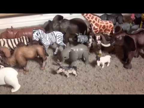 Animal Stampede Youtube