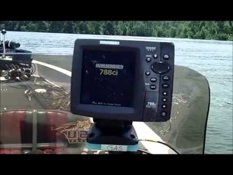 humminbird fix