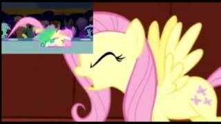 {1 Hour} Fluttershy