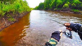 Заплыл в протоку А ТАМ ПОЛНО РЫБЫ Поклевки одна за одной Сплав по реке Усте