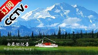 [Tibet Short Documentaries] Herbal Valley | CCTV