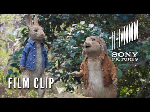 PETER RABBIT Movie Clip -