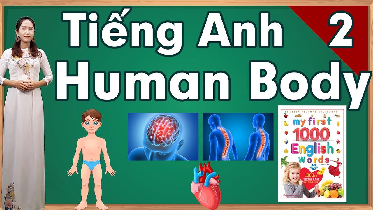 Học tiếng anh bài 2 chủ đề cơ thể người