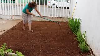 Download Jardinería. Como sembrar pasto o zacate nuevo. Hazlo en forma práctica. liclonny Mp3