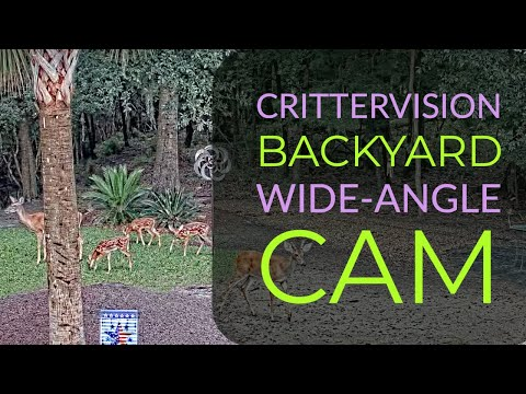 CritterVision Backyard Cam: 24/7 Critter, Nature And Wildlife Wide-Angle View!