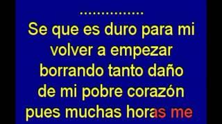 Yo Vivire (I Will Survive) - Gloria Gaynor - karaoke Tony Ginzo