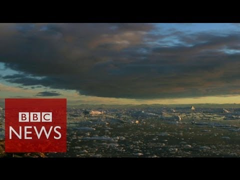 Climate change report in 60 seconds - BBC News