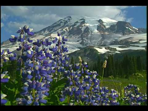 Mt Rainier Music Video - Mount Rainier National Park DVD