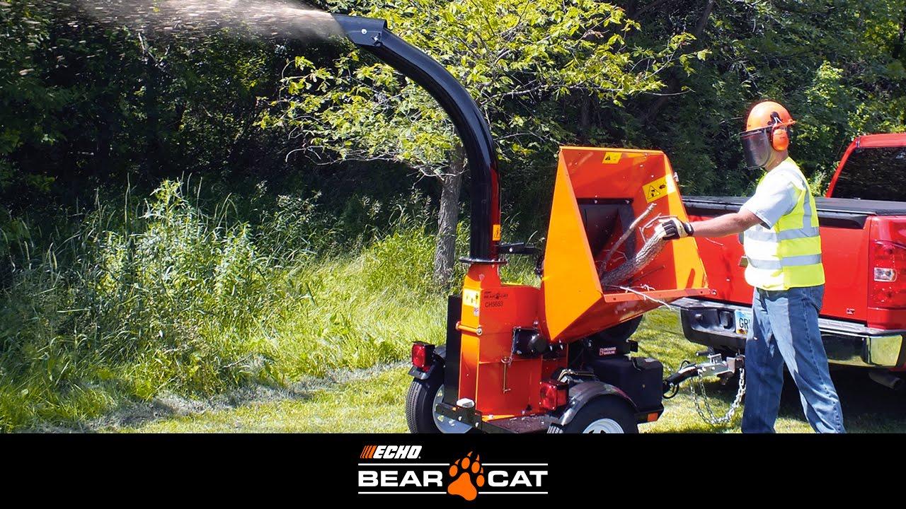 Echo Bear Cat Ch6614