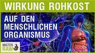 Wie Rohkost auf den menschlichen Organismus wirkt!