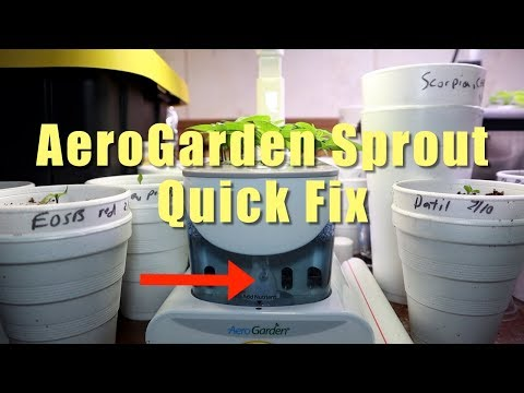 How to unclog the AeroGarden Sprout aerator