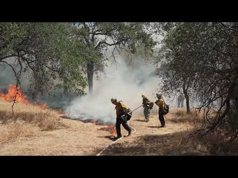 Combatting wildfires: Stanford researchers outline needed interventions   Environmental Policy Q&A