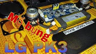 Mổ bụng loa LG PK3