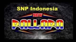 New Pallapa Brodin Ft Ayu - Malam Terakhir