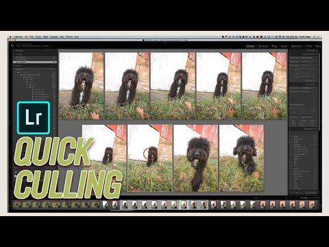 How to Cull a Photography Session Quickly in Lightroom CC