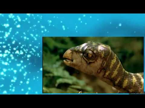 Walking With Dinosaurs s01 Ep05 Spirit of the Ice Forest
