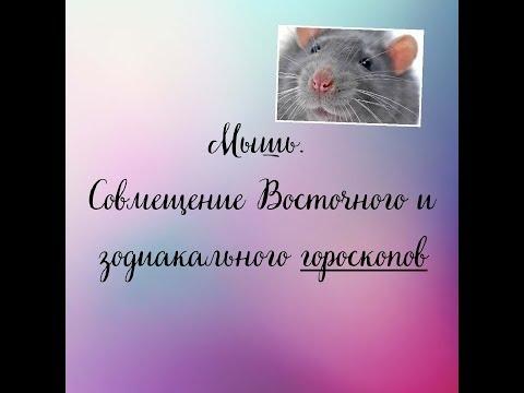 Мышь. Совмещение Восточного и Зодиакального гороскопов