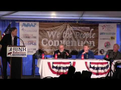 Action Panel- NH solutions - We The People Convention 2-6-16